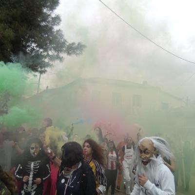 καρναβαλι 2017 079